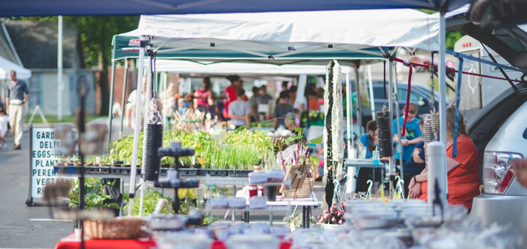 Test Nov6 Farmers market controversy